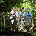 Rainforest adventure in Golfo Dulce